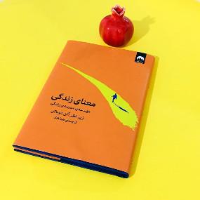 کتاب معنای زندگی